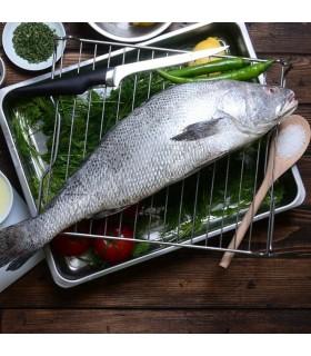 میش ماهی