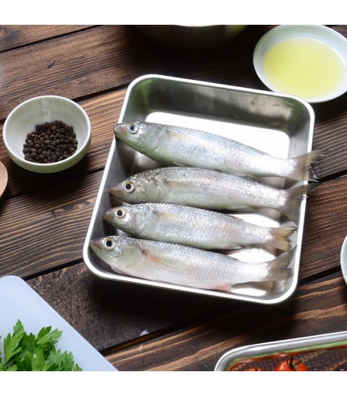 ماهی گاریز