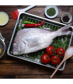 ماهی شانک