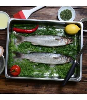 ماهی بیاح