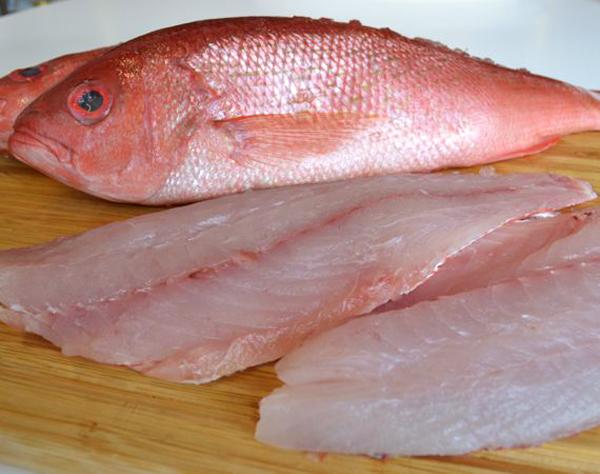 خرید ماهی سرخو