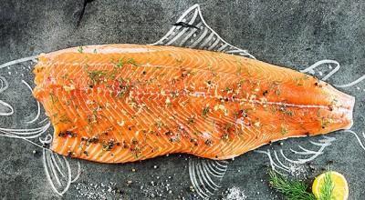 ماهی یا گوشت قرمز؟مسئله این است!
