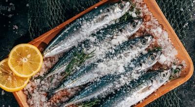 ماهی و کاهش افسردگی!
