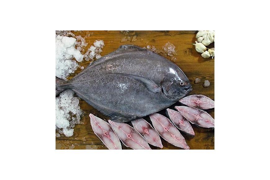 از خواص ماهی و فواید ماهیخواری چه میدانید؟