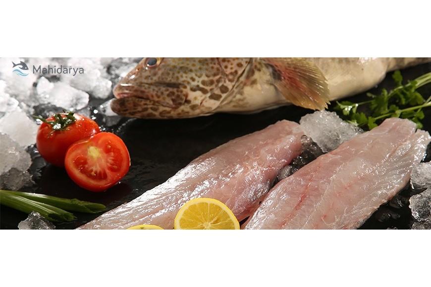 ترکیبات موجود در گوشت ماهی