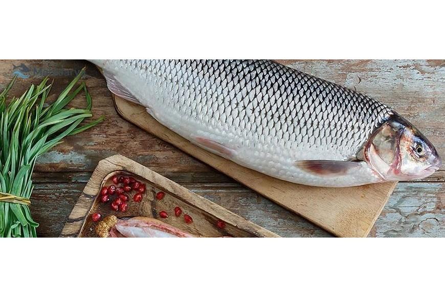 چرا خوردن ماهی سفید برای بدن مفید است ؟